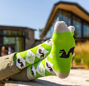 Argyle squirrel socks